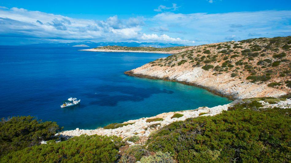 Kykladen-Insel Donoussa: Zikaden für den Sound des Sommers