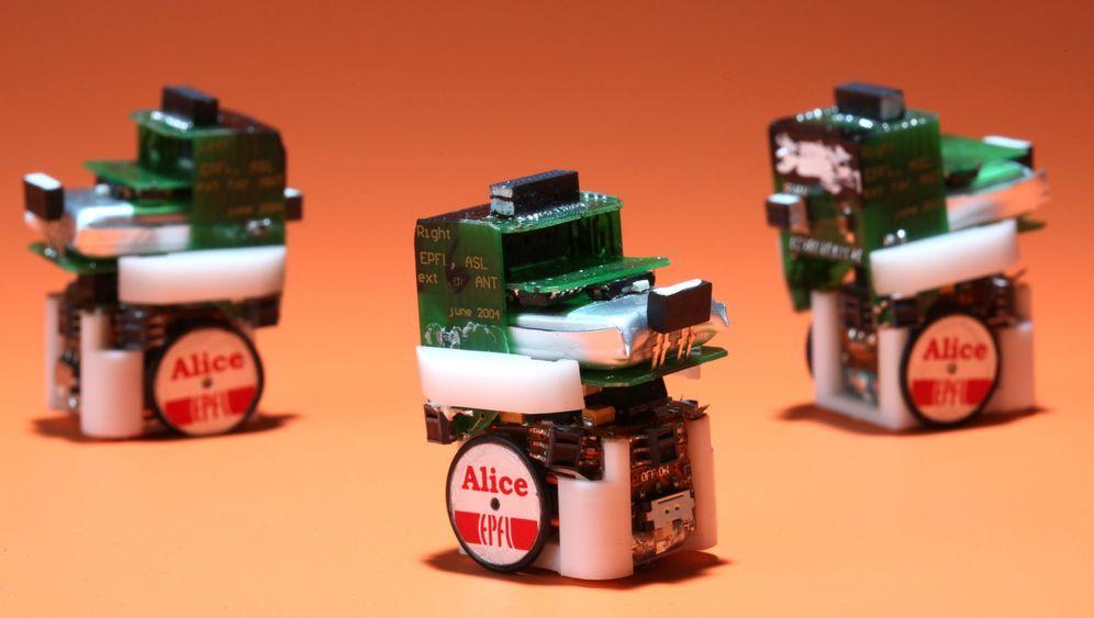 Künstliche Evolution: Die virtuell selbstlosen Roboter