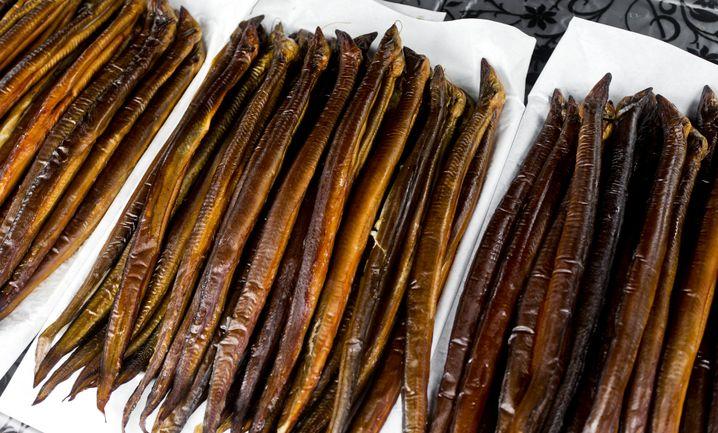 Aal gilt als stärker belasteter Fisch