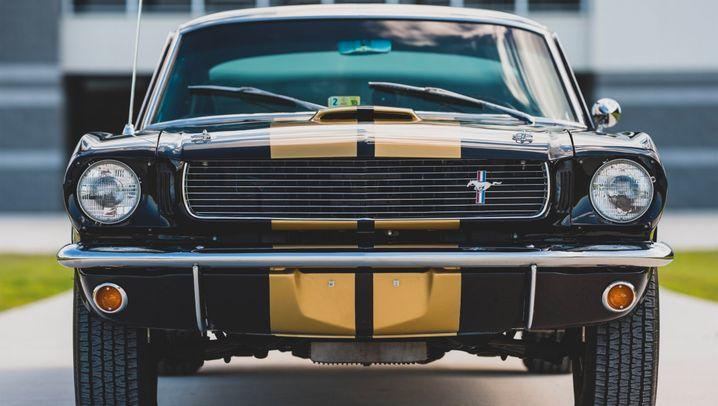 Rent a Racer: Der Shelby GT 350 H