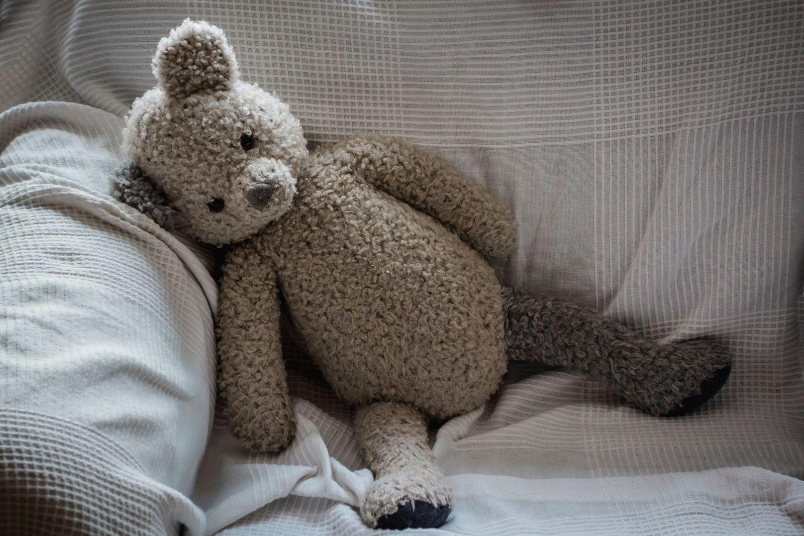Teddybär auf dem Sofa