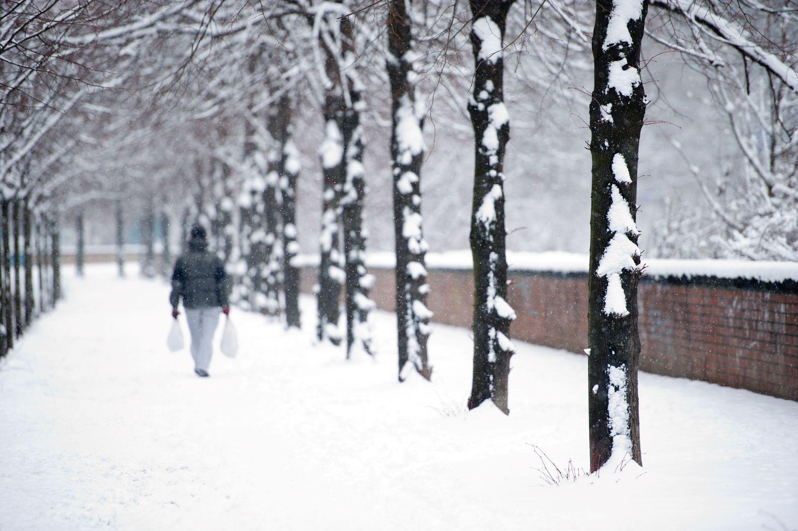 EINMALIGE VERWENDUNG Wetter / Deutschland
