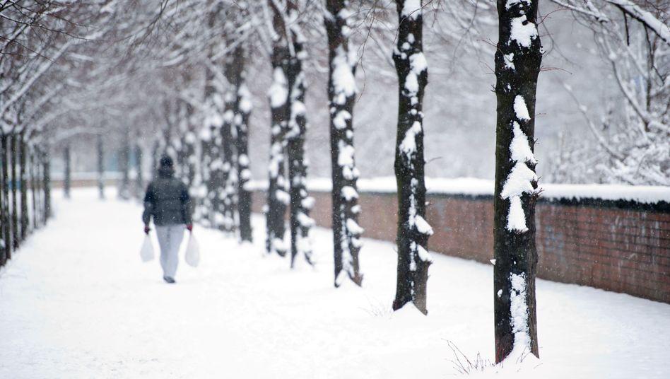 """Passant in Berlin: """"Leute rufen zwar an, aber sie kommen wegen des Schnees nicht hierher"""""""