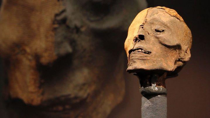 Totenkult: Ausstellung zeigt Mumien aus aller Welt