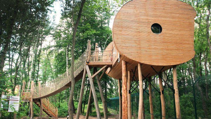 Baumhaushotel in Dörverden: Schlafplatz über dem Wolfgehege