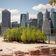 So sollen »Miyawaki«-Wälder das Stadtklima verbessern
