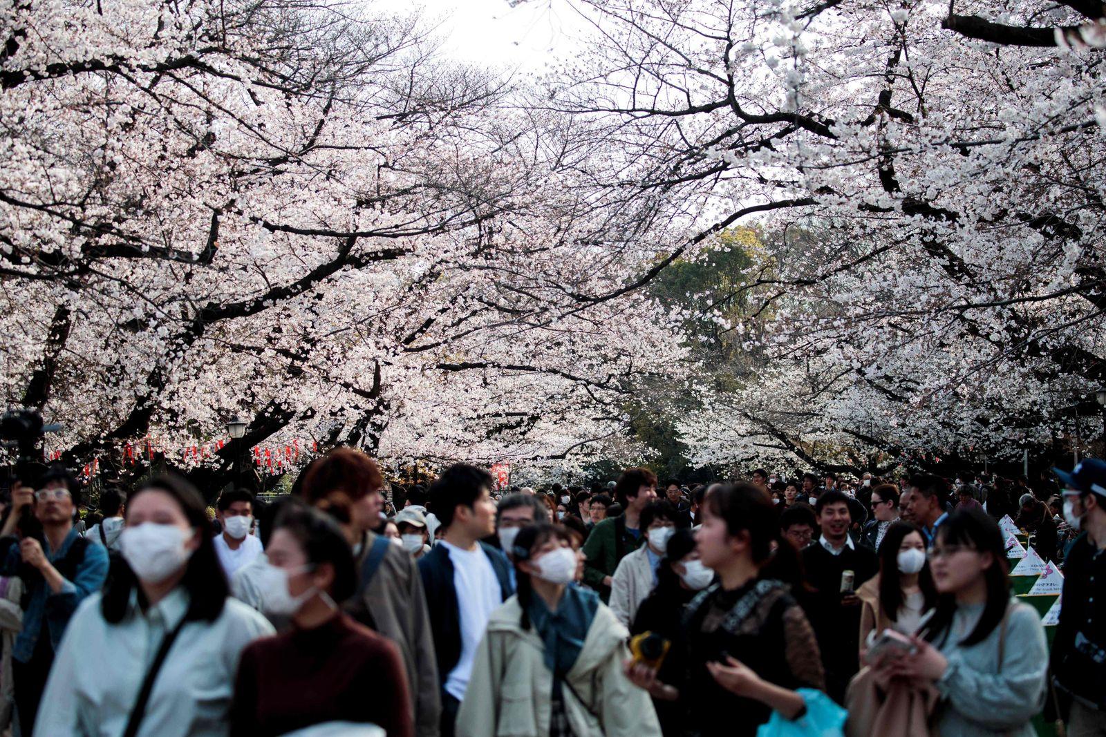 JAPAN-WEATHER-SPRING-LIFESTYLE