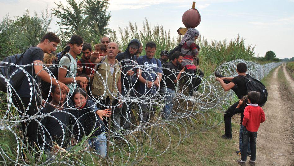 Serbisch-ungarische Grenze bei Röszke: Suche nach Alternativroute