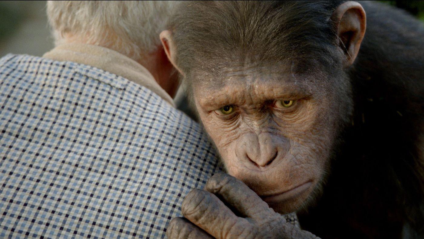 EINMALIGE VERWENDUNG Planet der Affen - Prevolution