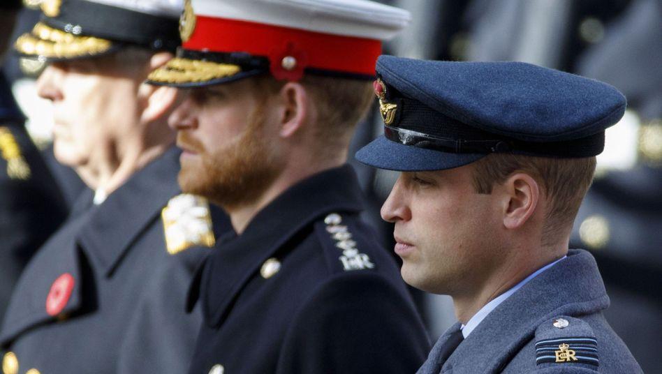 """Prinz Harry und Prinz William in London: """"Ich habe mein Leben lang den Arm um meinen Bruder gelegt"""" (Archivbild von November 2019)"""