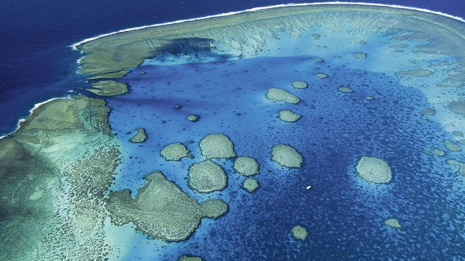 Luftaufnahme des Great Barrier Reef vor Rockhampton