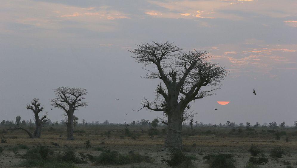 Photo Gallery: Taking Mali's North