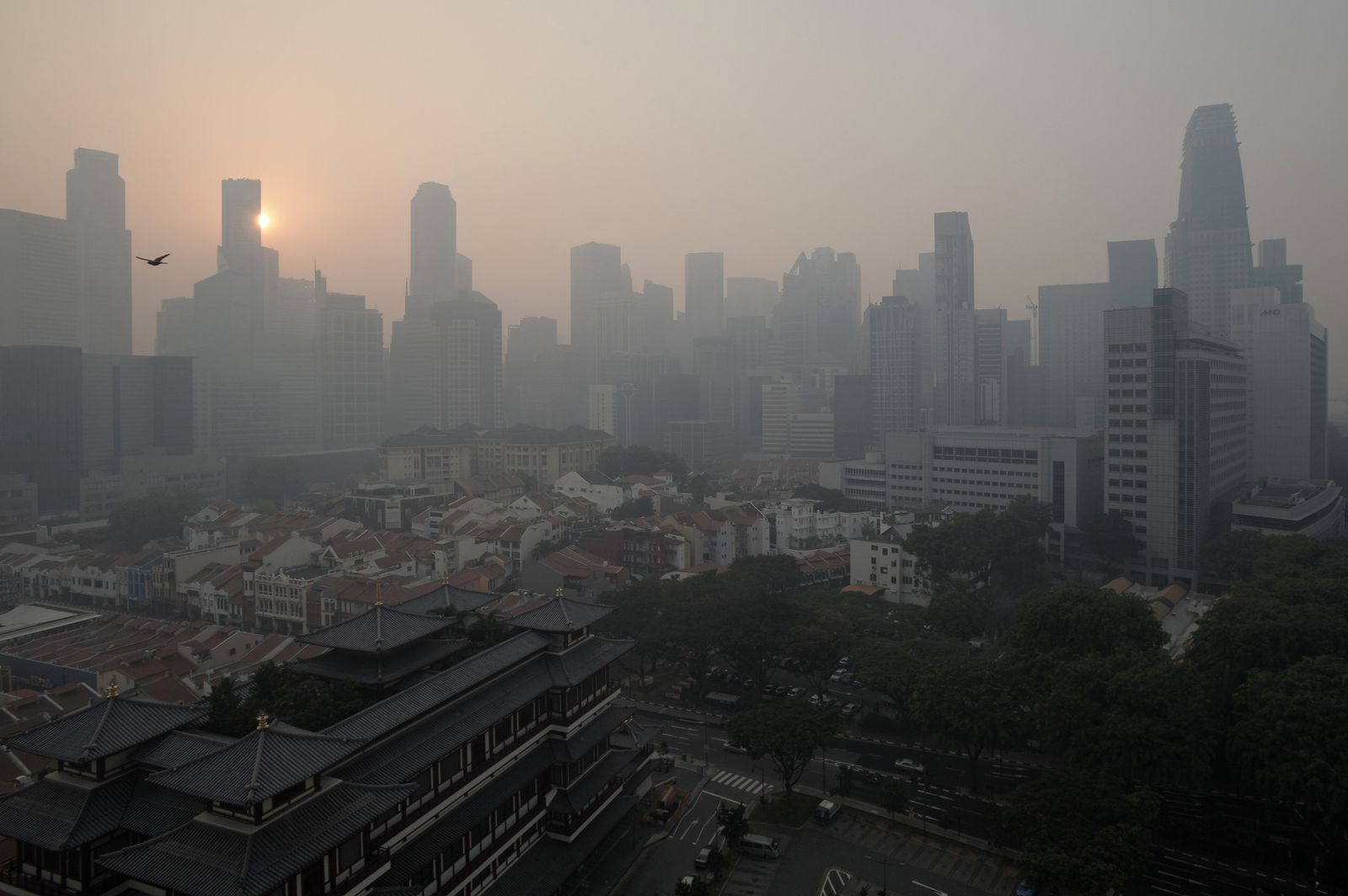 Smog / Singapore
