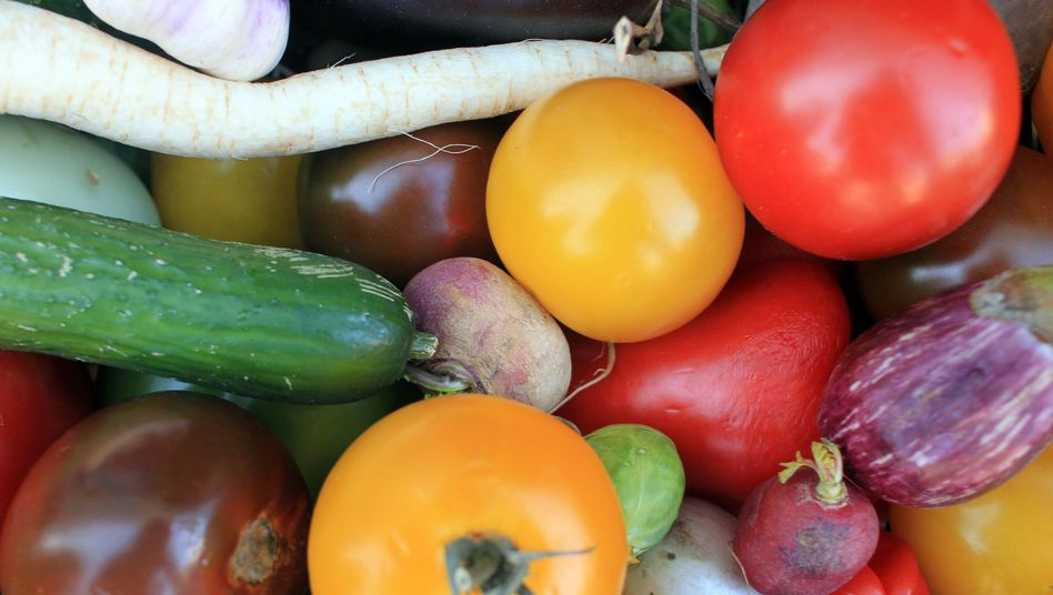 "Buntes Gemüse: ""Man muss online mit offline koppeln"""