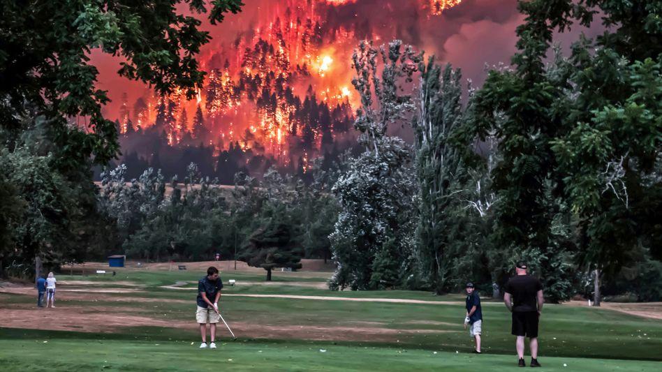 """Waldbrand in den USA: """"Defätismus ist vor allem eine bequeme Haltung. Man kann sich damit gemütlich einrichten und über das sich langsam entfaltende Klimadesaster lamentieren, ohne etwas dagegen tun zu müssen"""""""