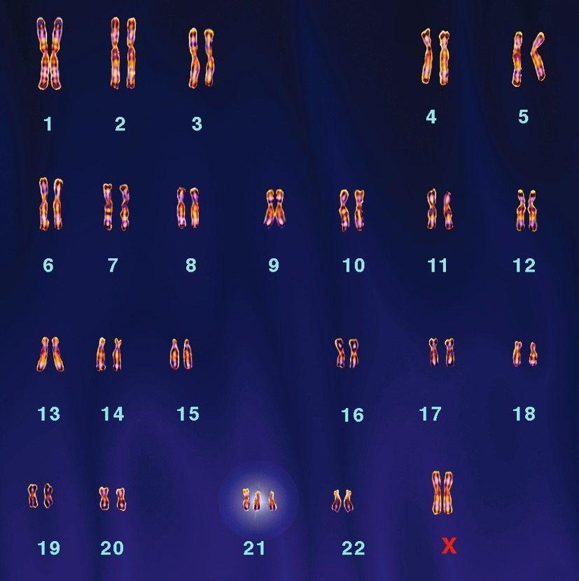 2b26f11b-bee3-4b7a-afd2-31e89d524530