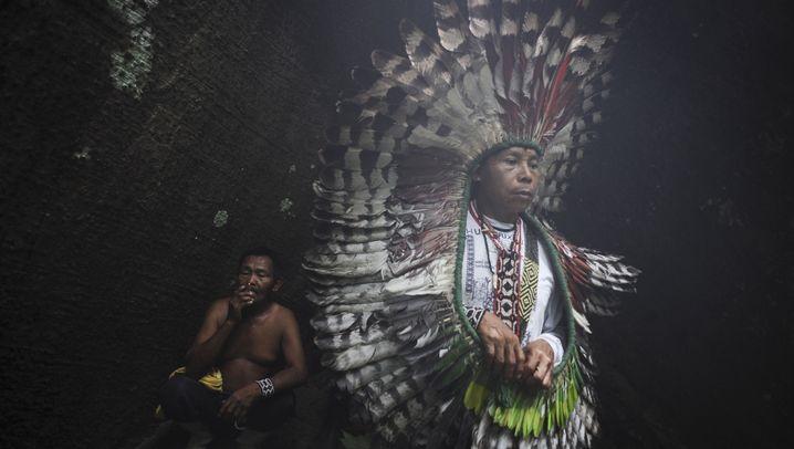 Ureinwohner in Brasilien: Vertrieben, schikaniert, bedroht