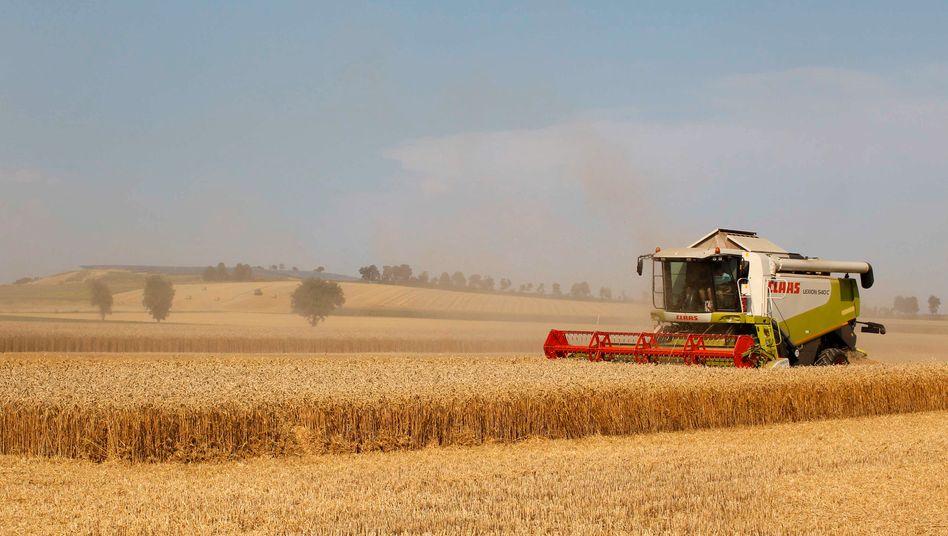 Ernte bei Ingolstadt (Symbolbild): Deutschland exportiert aktuell nur noch fünf Prozent der Getreideproduktion