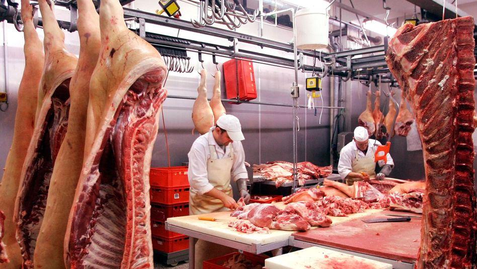 Schlachter: Grüne fordern weniger Tiertransporte