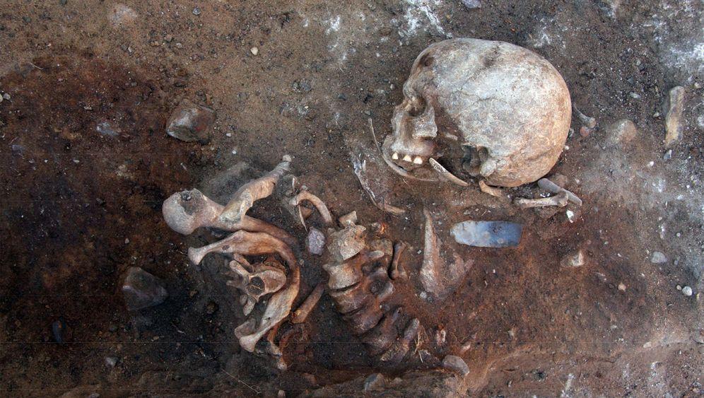 Steinzeitfriedhof: Das Geheimnis vom Weinberg