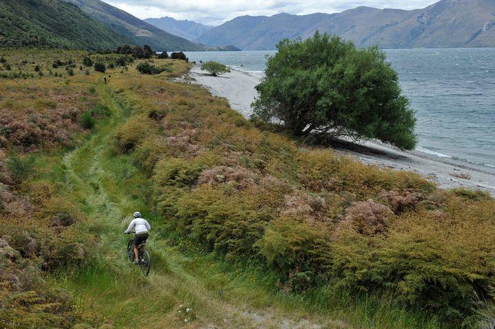 Mountainbikerin in Wanaka: auf Offroad-Radwegen durch Neuseeland