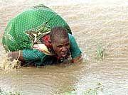 Eine Mosambikanerin versucht sich aus den Fluten zu retten