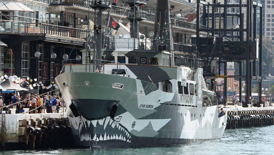 Kampf gegen den Walfang: Umweltgruppen bekommen Unterstützung von der IWC