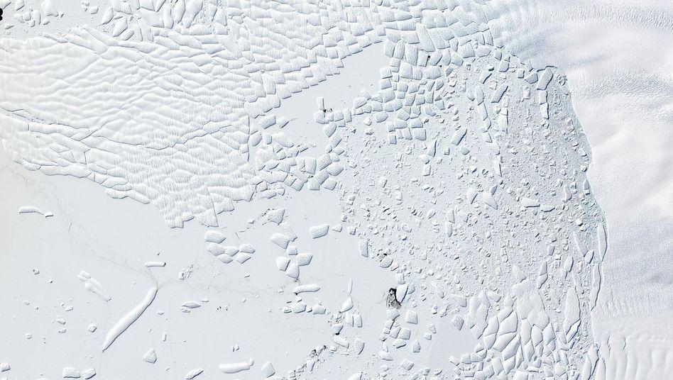 Satellitenbild vom Thwaites-Gletscher in der Westantarktis