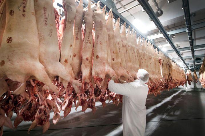 Ein Tönnies-Mitarbeiter in Rheda-Wiedenbrück mit geschlachteten Schweinen