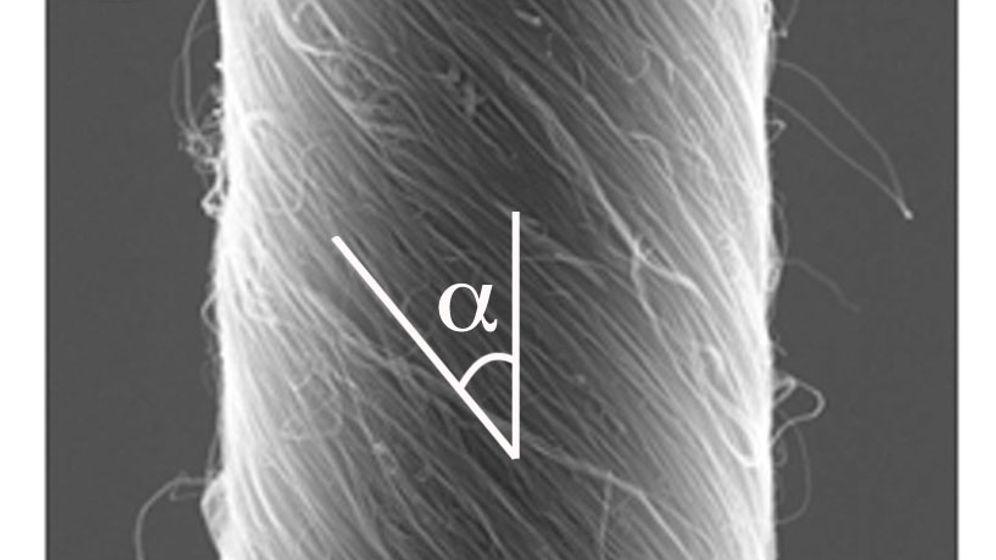 Künstlicher Muskel: Mini-Motor aus Nanoröhrchen