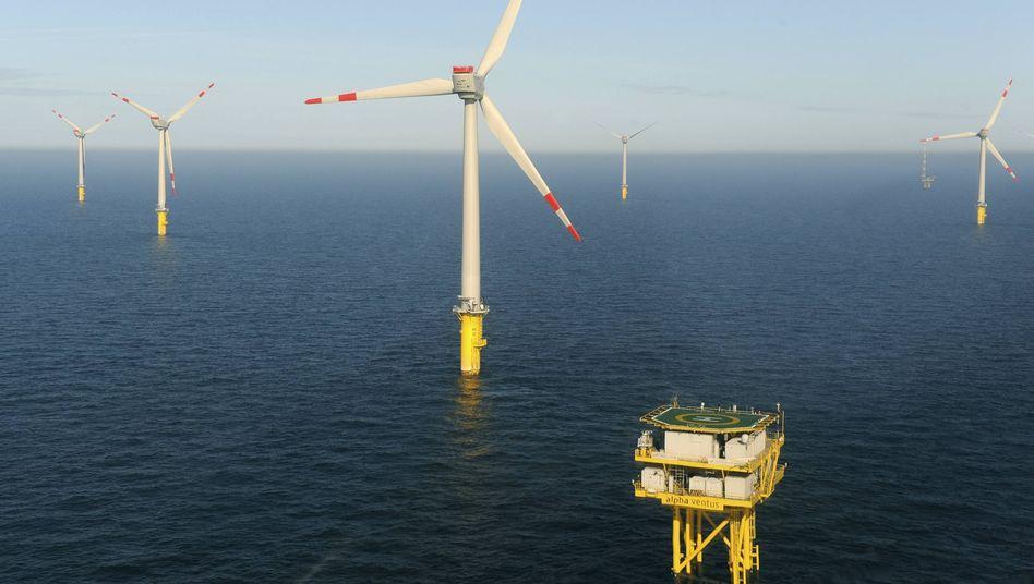 "Windpark Alpha Ventus: CSU-Ministerin Aigner betreibe ""knallharte Regionalpolitik"""