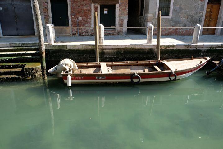 (Vergleichsweise) Klares Wasser in Venedig: Kurzfristiger Effekt des Lockdowns