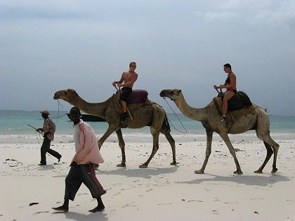 Tourists ride camels on a deserted beach at a tourist resort near the Kenyan coastal city of Mombasa in Jan. 2007. Kenya has seen up to $1 billion in tourism-related losses linked to the bloody turmoil engulfing the country.
