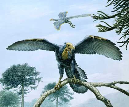 Archaeopteryx: Echse in der Luft