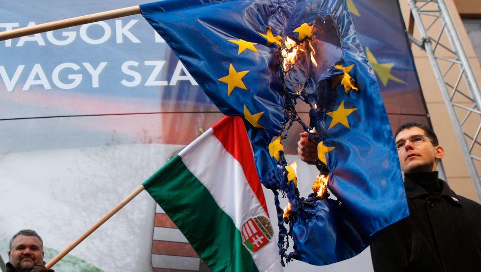 Budapest: Ein Mitglied der rechtsextremen ungarischen Partei Jobbik verbrennt eine EU-Flagge (Archivbild aus 2012)