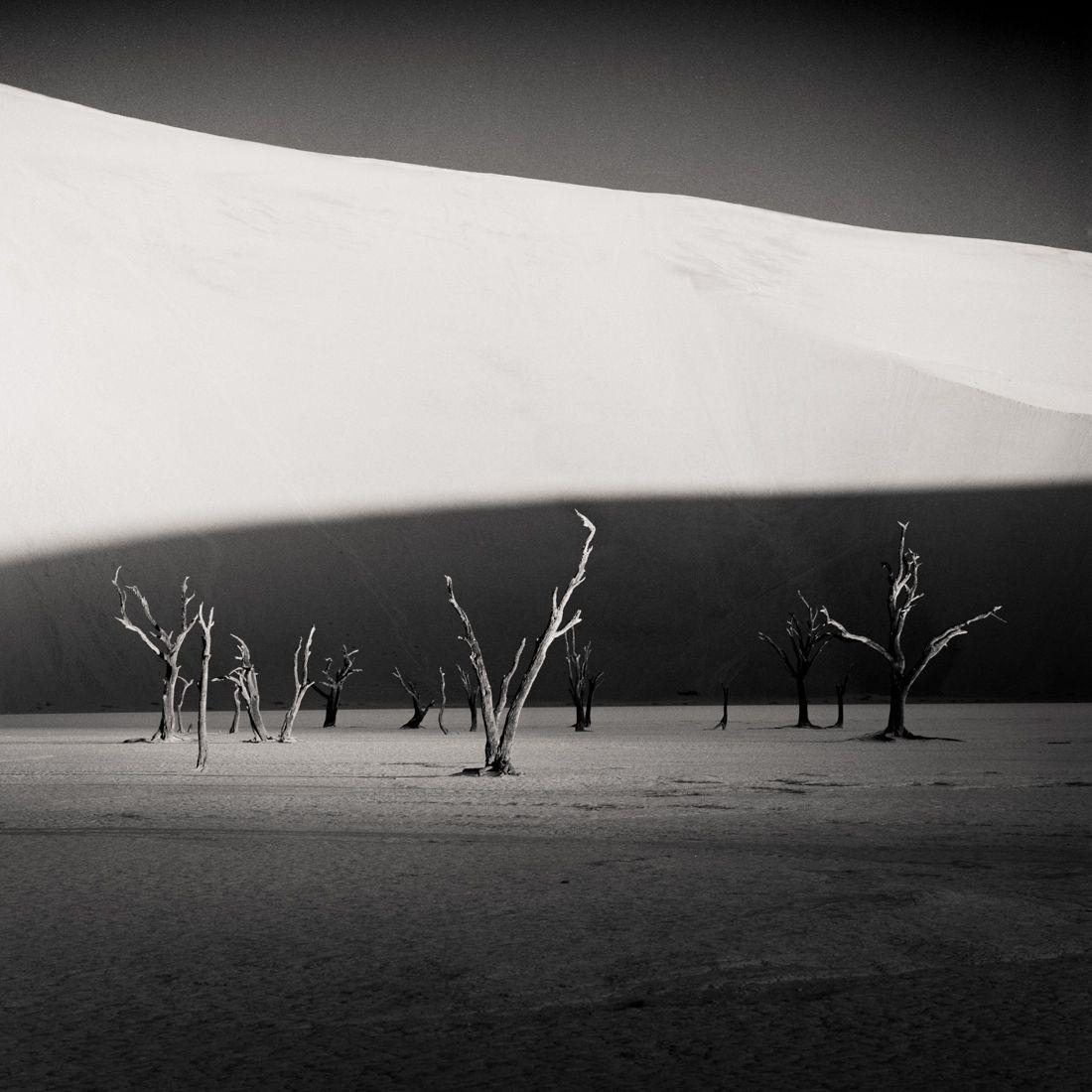 Sossusvlei-Trees-By-Hector-Izquierdo-Seliva