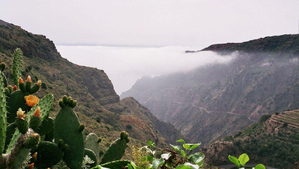 La Gomera: Zwitscher dir einen