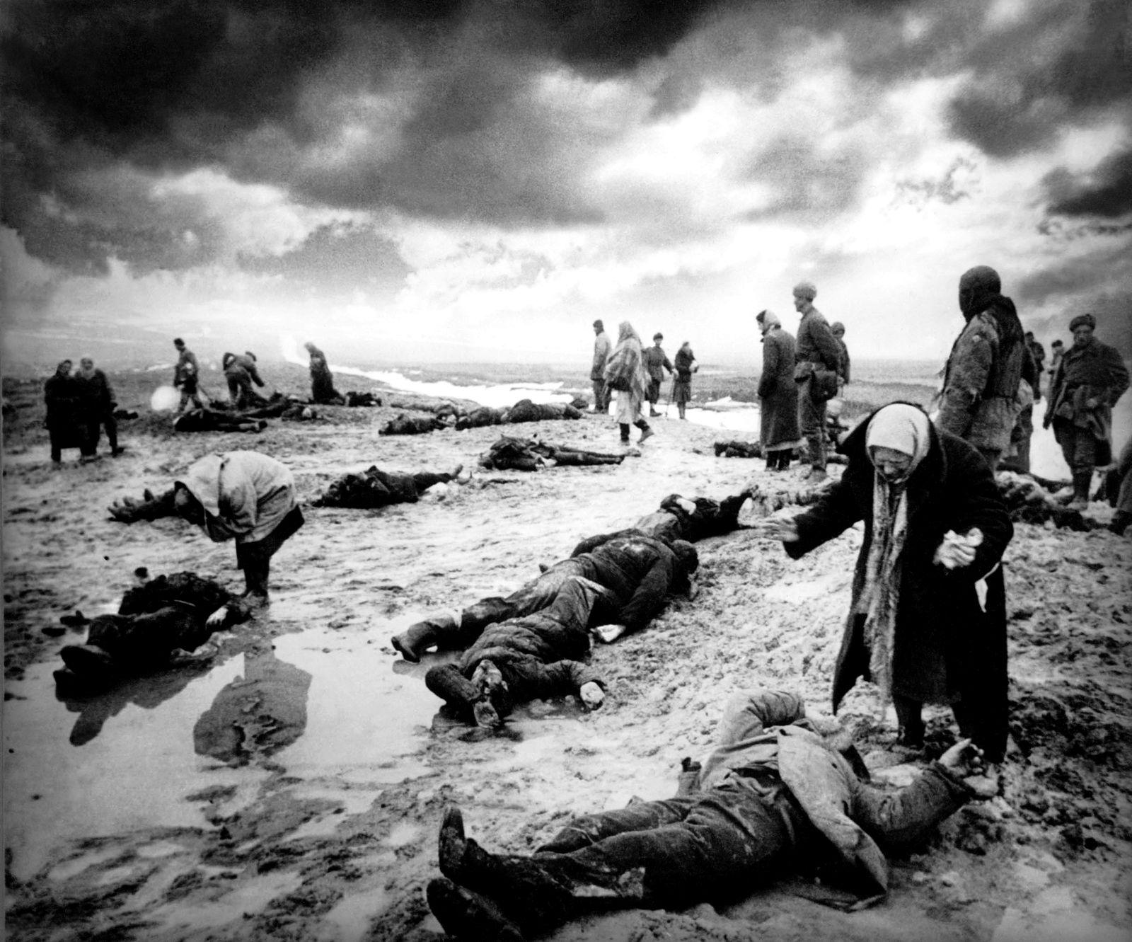 EINMALIGE VERWENDUNG SP 35/2019 S. 37 - Zweiter Weltkrieg, Identifizierung der Leichen