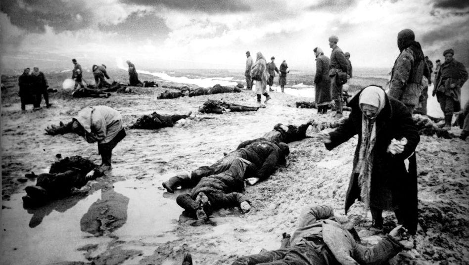 Family members seek to identify their fallen relatives in Crimea in 1942.