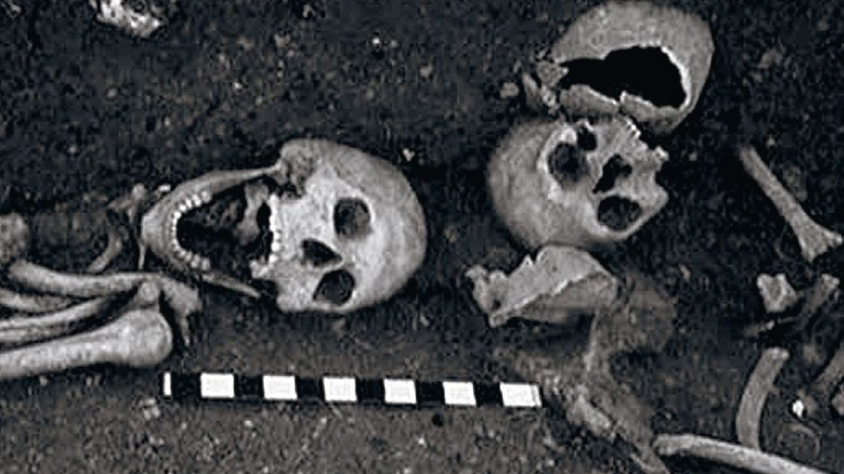 Southwell-Skelett (l.) 1959