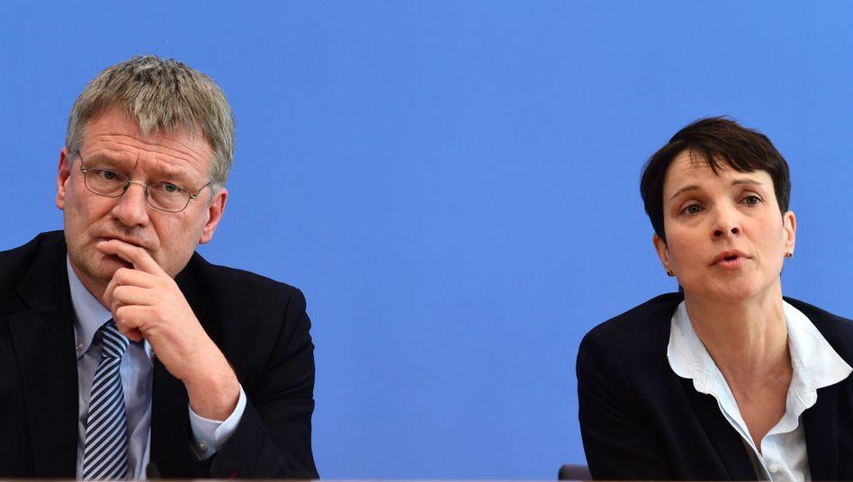 AfD-Vorstandssprecher Meuthen und Petry