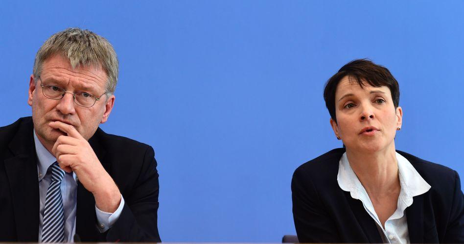 AfD-Chefs Meuthen und Petry