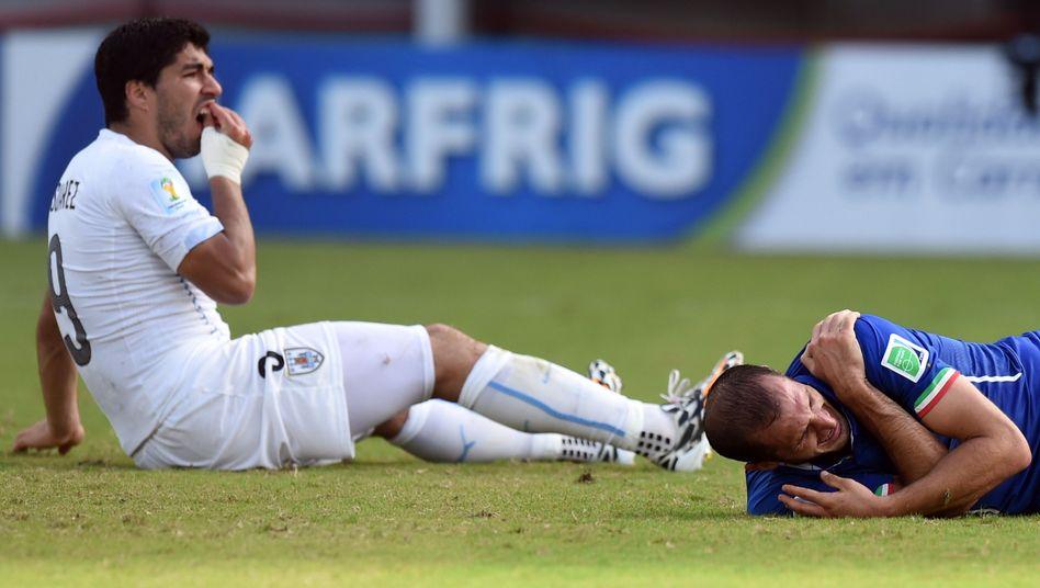 Autsch, mein Zahn: Luis Suárez nach der Attacke gegen Giorgio Chiellini