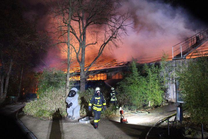 Feuerwehrleute vor dem brennenden Affenhaus des Krefelder Zoos