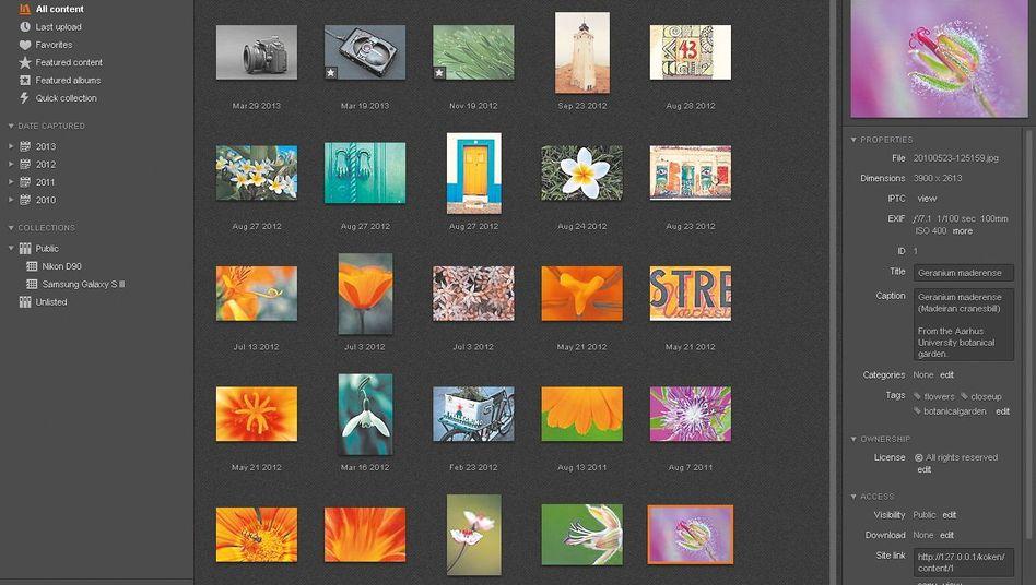 Koken: Mit dieser Software entstehen schnell schöne Foto-Websites
