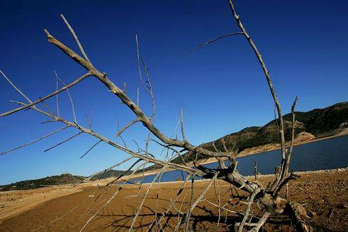 Dürre in Spanien (Februar 2006): EU-Studie sagt dem Süden Europas verheerende Dürren voraus