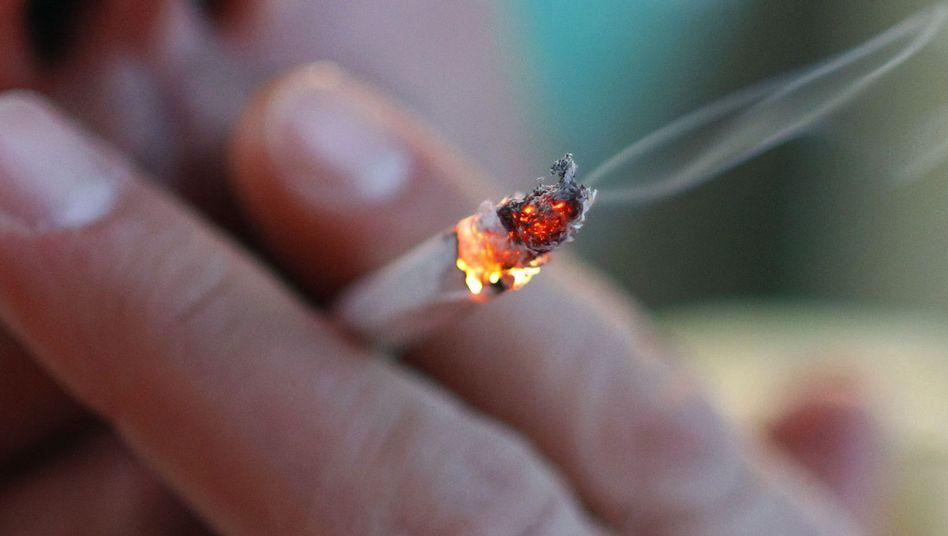 Der Qualm zieht durch alle Ritzen: Als einziger Nichtraucher in einer WG hat man es nicht immer leicht