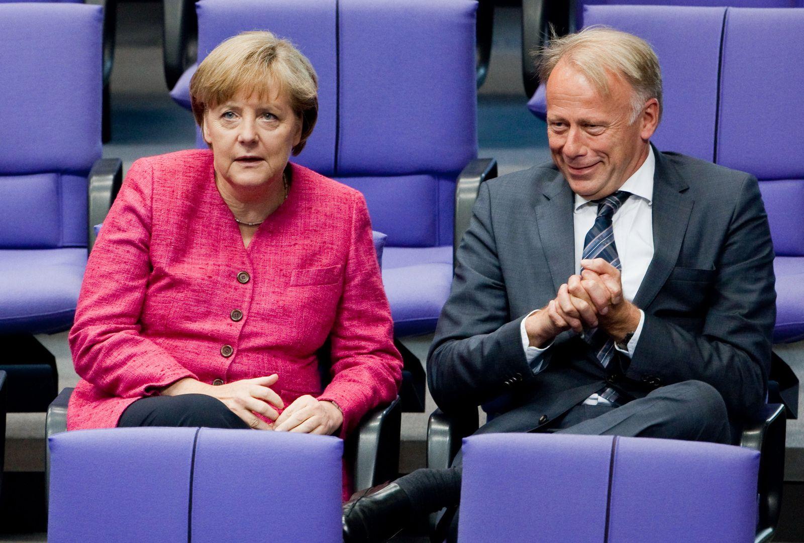 Merkel / Trittin