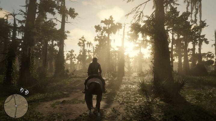 """""""Red Dead Redemption II"""""""