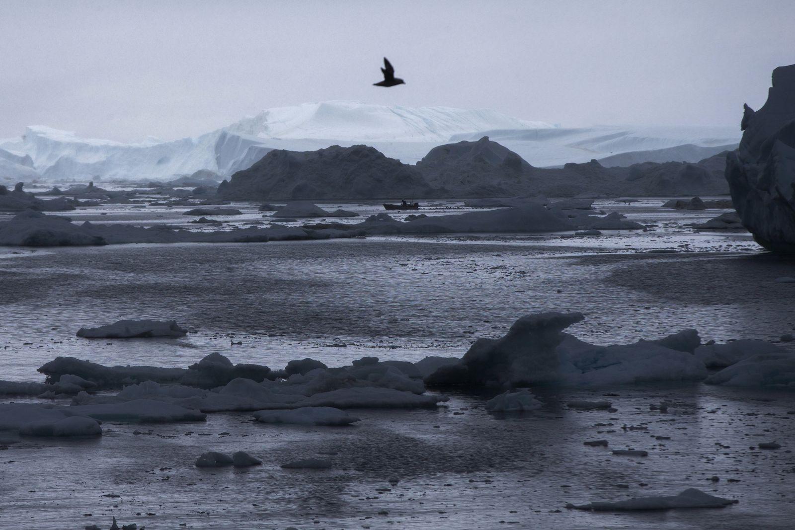 Arktis / Grönland